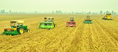 Combine Harvester (Borlaug Institute for South Asia) Tags: combine direct seeding field ploughing cimmyt agriculture farming india asia south pusa farm plot site farmer producer person man indian asian collaboration partnership maize corn crop plant borlaug institute for bisa