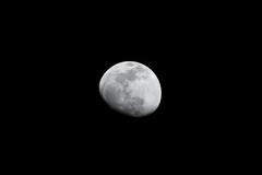 TAMRON SP 150-600mm F/5-6.3 Di VC USD G2 (A022) (skyline798) Tags: tamron a022 150600mm nikon d500 moon