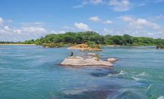 IIlha do Rodeadouro - Rio São Francisco - Brasil (Airton Morassi) Tags: island river petrofina juazeiro pernambuco velho chico água brazil