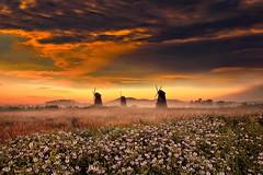 Mulini (Zz manipulation) Tags: art ambrosioni zzmanipulation mulini arancio pale campagna tramonto paesaggio cielo rosso