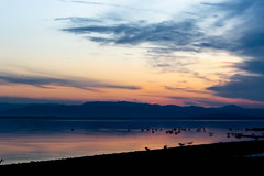 Salton Sea Sunset (evwingate) Tags: sunset salton sea saltonsea southerncalifornia socal long exposure longexposure f36 55mm water mountains california coachella coachellavalley indio bombay beach bombaybeach