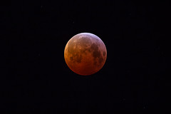 LUNAR ECLIPSE 01/21/2019 (Regulus12) Tags: canon6d astrotrac astronomy eclipse moon space lunar lunareclipse2019 bloodmoon redmoon astrometrydotnet:id=nova3161796 astrometrydotnet:status=solved