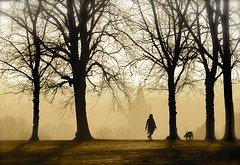 Walking The Dog (Edinburgh Photography) Tags: nature outdoors landscape trees silhouettes city skyline documentary photojournalism sepia monochrome inverleith park nikon d7000 avril