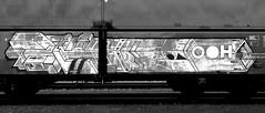 Graffiti on Freights (wojofoto) Tags: graffiti amsterdam nederland netherland holland freighttraingraffiti freighttrain fr8 freights vrachttrein cargotrain wojofoto wolfgangjosten zwartwit blackandwhite monochrome delta