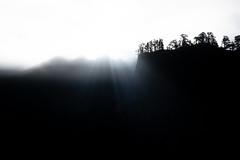 La Palma (Roberto Steinert) Tags: lapalma la palma islascanarias canaryislands canarias spain españa caldera de taburiente cielo sky sun sol landscape paisaje fx efecto arboles tree woods bosque rayos landspace photography fotografia photopills outdoor outside canon