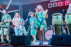 Malavita - Kingsbridge Fairweek (tramsteer) Tags: tramsteer malavita music band musician kingsbridgefairweek drums guitars devon nightime southhams southwestengland geotag