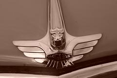 Jaguar MkVII 1956, HRDC Track Day, Goodwood Motor Circuit (3) (f1jherbert) Tags: sonya68 sonyalpha68 alpha68 sony alpha 68 a68 sonyilca68 sony68 sonyilca ilca68 ilca sonyslt68 sonyslt slt68 slt sonyalpha68ilca sonyilcaa68 goodwoodwestsussex goodwoodmotorcircuit westsussex goodwoodwestsussexengland hrdctrackdaygoodwoodmotorcircuit historicalracingdriversclubtrackdaygoodwoodmotorcircuit historicalracingdriversclubgoodwood historicalracingdriversclub hrdctrackday hrdcgoodwood hrdcgoodwoodmotorcircuit hrdc historical racing drivers club goodwood motor circuit west sussex brown white sepia bw brownandwhite