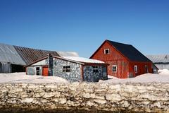 Winter Remainings (emerge13) Tags: countryside spring farms snow stsévère stseverequébec farmbuildings saariysqualitypictures barns farhouses springtime hof