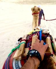 Doha, Qatar  © Neale Castelino Photography #nealecastelino #nealecastelinonophotography #letscreateart (nealecastelino) Tags: nealecastelino nealecastelinonophotography letscreateart