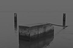 Dead calm (lebre.jaime) Tags: portugal lisbon nikon d600 afsnikkor5018g digital pb pretobranco noiretblanc bw blackwhite ptbw fullframe conceptual