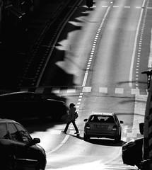 Traffic geometry (Leoniedas) Tags: wezembeekoppem belgique belgium street streetphotography bw blackandwhite lines traffic