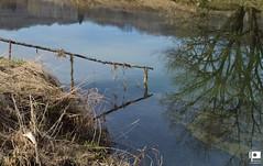River Dobra (Ivica Pavičić) Tags: