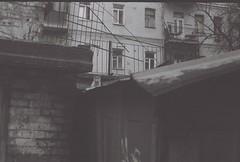 304 (Kath Doroshyna) Tags: garage kitten cat filmphoto monochrome bw 35mm