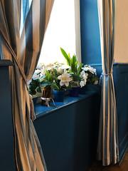 awaiting a greek Dinner (Rosmarie Voegtli) Tags: windowsill restaurant curtains greek familytime stripes odc ourdailychallenge blue fabric flowers