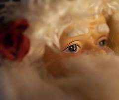 Santa Bokeh (brucekester@sbcglobal.net) Tags: macromondays holidaybokeh
