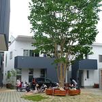 戸建住宅群の写真