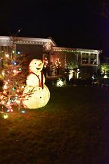 Christmas Time (earthdog) Tags: 2018 nikon nikond5600 d5600 18300mmf3563 christmas decoration light christmaslight sanjose willowglen snowman tree christmastree building