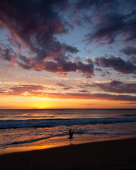 _61A5373 (exceptionaleye) Tags: availablelight exceptionaleye lagunabeach southerncalifornia california canoneos canonef24105mmf4lisusm 5dmarkiii canon5dmarkiii coast coastalview color sunset shore shoreline shilloute clouds cloudssunset cloudy crystalcove