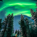 The Northern Lights - Ivalo, Lapland - Travel photography
