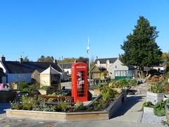 Red Telephone Box, Garmouth Community Garden, Garmouth, Oct 2018 (allanmaciver) Tags: red telephone box garmouth community garden moray coast scotland iconic trees october beautiful day walk enjoy explore allanmaciver