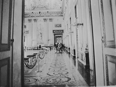 #cameraoscura#fomapan#porst#fotografiaanalogica#analogica (maria.marrella) Tags: fotografiaanalogica fomapan analogica cameraoscura porst
