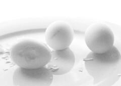 ... (jankarelkok) Tags: artistieknaaktfotograaf beeldmaker fotograaf fotografie fotostudio harderwijk jankarelkok landschapsfotograaf nederland portretfotograaf studio studiofotografie wwwjankarelkoknl eggs eieren analoog filmisnotdead