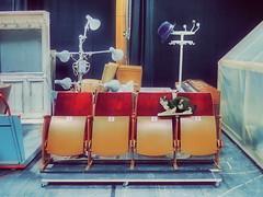 1 2 3 4 x a:  Piano Cat Hat Lamps .... Katze Klavier Lampen Hut .... - Ganz normaler Arbeitsalltag - Operation Zinnober (hedbavny) Tags: hut hat lamp verhör stativ cat katze garderobe garderobenständer versatzstück requisite ausstattung bühnenbild podest bühnenwagen sitzreihe theatersitz fauteuil lehnstuhl gewächshaus labor glashaus koffer suitcase klavier piano red rot braun brown beige yellow gelb schwarz black blue blau vorhang curtain molton samt stoff fabrique stroh ausgestopft präpariert präparat schreibtischlampe probe probebühne studio arbeit work handwerk simmering gasometer zaches zinnober vermilion grey grau holz wood kette chain ständer wien vienna austria österreich hedbavny