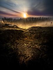 Loureiro (Noel F.) Tags: sony a7r a7rii ii voigtlander 15 iii loureiro lampai teo galiza galicia mencer sunrise neboa fog mist
