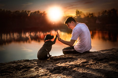 Mans Best Friend (Christina Draper) Tags: dog dogphotography canine caninephotography sunset lake water staffie portrait beach friends