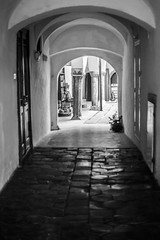 through another door... (jernej.cucek) Tags: blackandwhite person people text signage bw monochrome street art streetart timeless time shadow black light white flowers entrance door exit