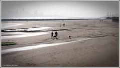 """"""" SILHOUETTE'S IN NEW BRIGHTON """". (liverpoolmeerkat has returned.) Tags: newbrighton mersey beach dogwalking silhouette"""