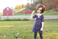 Golden Hour (AluminumDryad) Tags: fairyland minifee mnf juri13 elfears eventhead msd abjd balljointeddoll doll resin barn outdoors goldenhour autumn grass fence farm