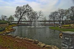 IMG_5541 (Roger Kiefer) Tags: dallas arboretum outdoors beauty nature landscape