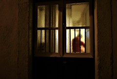 the red cook (*F~) Tags: lisboa portugal street door humans people silhouette transparence kitchen cook cooking public private light darkness night straycats