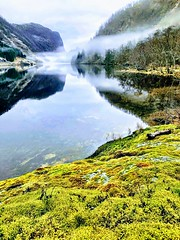 Stillhet -|- Serenity (erlingsi) Tags: erlingsi iphone erlingsivertsen dregebø sunnfjord gaular lake mist trolsk green norway mystical dregebøen