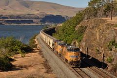 5/19/13 The Dalles, OR (Austin Jacox) Tags: union pacific trains railroad grain oregon columbia river gorge dalles nikon