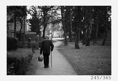 Sunday walk (Aljaž Anžič Tuna) Tags: sunday walk šiška old oldguy oldman elder cain age never give up photo365 project365 portrait people street streetphotography onephotoaday onceaday 365 35mm 365challenge 365project nikkor nice naturallight nikon nikon105mmf28 105mmf28 f28 dailyphoto day dof dude d700 nikond700 bw blackandwhite black white blackwhite beautiful