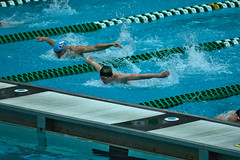142A1237 (Roy8236) Tags: gmu american old dominion swim dive