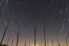 Polaris Over Manasquan Reservoir (Mike Ver Sprill - Milky Way Mike) Tags: