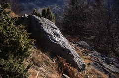 rhn01245F (m-klueber.de) Tags: rhn01245f 20010203 hoherhön hochrhön landschaft winter pferdskopf phonolith fels phonolithfels rhön deutschland 2001 rhn01245 mkbildkatalog