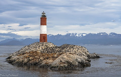 Lonely lighthouse / Одинокий маяк (Vladimir Zhdanov) Tags: travel argentina chile tierradelfuego ushuaia lighthouse island ocean water birds sealion city mountains snow landscape nature sky cloud rock