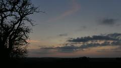 P2480192 (jeanchristophelenglet) Tags: osnyfrance coucherdesoleilcrépuscule sunsettwilight pôrdosolcrepúsculo bleu blue azul rose pink rosa gris grey cinza hiver winter inverno arbre tree arvore