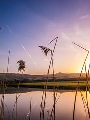 Morning river wake up 2 (strangesimon) Tags: painting sunrise colours explore walk outside rural landscape countryside trails trek planes art japanese minimalist lines