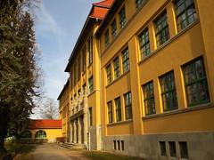 Fürst Günther Gymnasium (germancute) Tags: outdoor arnstadt thuringia thüringen tree town neideck building school