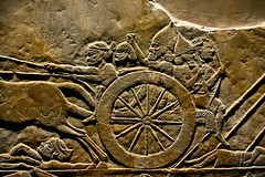 London 2018 – British Museum – After the battle (Michiel2005) Tags: ashurbanipal head chariot hoofd war fight oorlog assyria exhibition tentoonstelling assyrian relief reliëf britishmuseum bm uk unitedkingdom greatbritain vk verenigdkoninkrijk grootbrittannië engeland england london londen