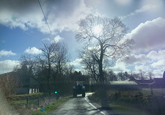 Follow the leader! (Elisafox22) Tags: elisafox22 iphone xsmax fencedfriday fencefriday hff road tractor trees wooden barbedwire verge grass stonewalls lichen winter sunshine clouds sheds croft farm fence old broken grasses aberdeenshire outdoors scotland elisaliddell©2019