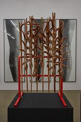 Men's legs (ivoräber) Tags: ivo räber flowers to arts blumen für die kunst kunsthaus aarau theunforgettablepictures balthasar burkhard marcus forster
