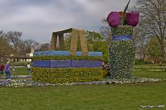 IMG_5571 (Roger Kiefer) Tags: dallas arboretum outdoors beauty nature landscape