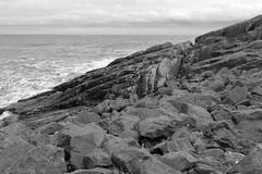 Cliffs,Collieston_Mar 19_524 (Alan Longmuir.) Tags: monochrome grampian aberdeenshire collieston cliffs