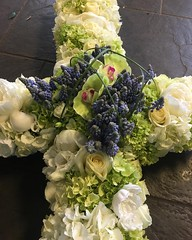 A 5ft cross designed especially for a customer, massed with peonies, hydrangeas and roses. With a beautiful cluster of muscari and orchids . . #parsleyandsageflorist #stokeontrentflorist #hydrangealove #hydrangea #peonies #rose🌹 #rose #orchidlove #or (parsleyandsage11) Tags: peonies flowers flowerstagram flowerpower flowerdaily floristshop florals flowerdesign hydrangea orchids flowerbeauties muscari flowerssuperpics parsleyandsageflorist hydrangealove rose flowerperfection orchidlove flowerspecial stokeontrentflorist